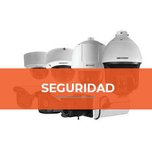 seguridad-categoria
